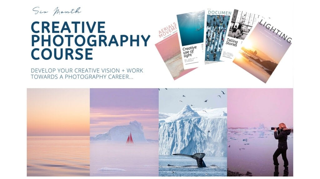 Feed Your Interest To Gain Photography Knowledge With These Courses