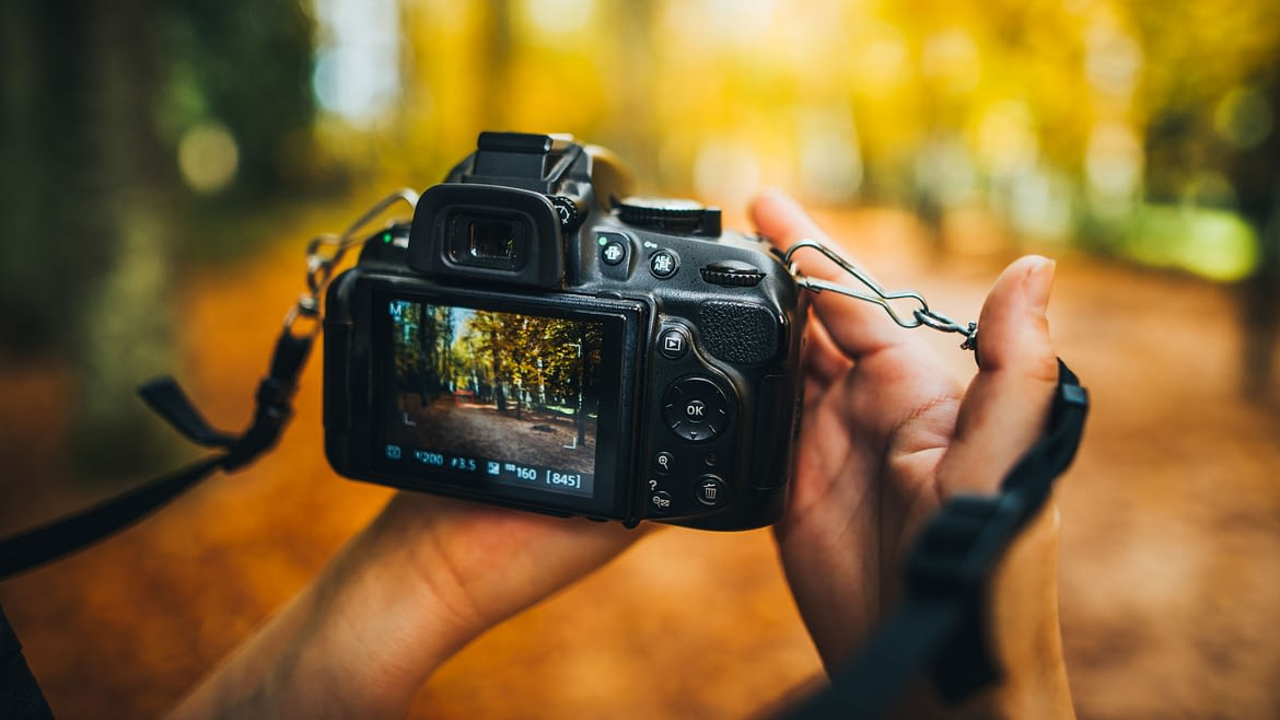 Finding a Good Quality and Cheap Digital Camera Online