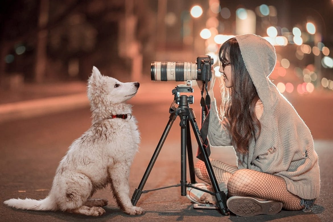 Photography – The Benefits of Using a Tripod