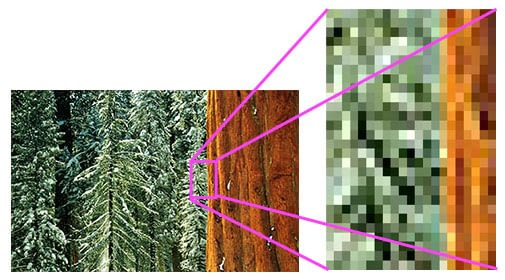Digital Photography – What Are Pixels?